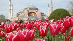 İstanbul Lale Festivali 1 Ay Sürecek