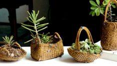 Hasır Sepetlerinizde Çiçekler Açacak