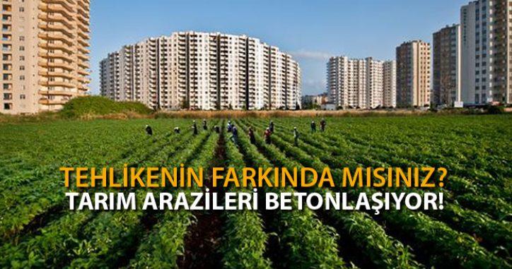 Yatırım İçin Alınan Tarım Arazilerinde Yükseliş Var!