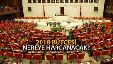 Türkiye 2018 Bütçesini Nereye Harcayacak?