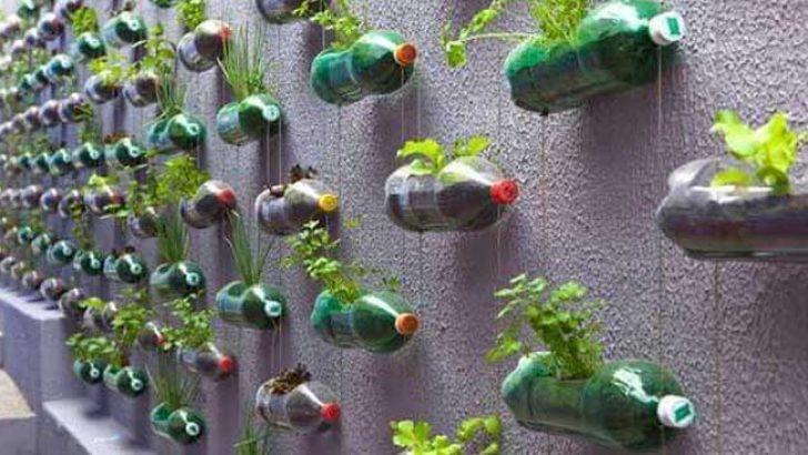Bahçe Dekorasyonu İçin Birbirinden Güzel Kendin Yap Fikirleri